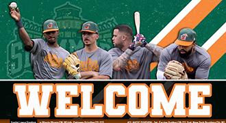 Joliet Slammers - メジャーリーグを放送するマイナーリーグチーム